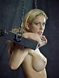 Cherie Deville: Hooked, Boxed & Rang