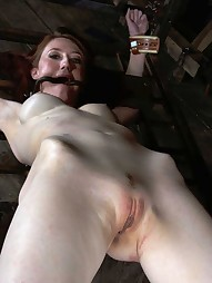 Kendra Bound and Fucked