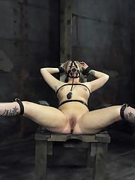 Sasha Knox Laid Bare
