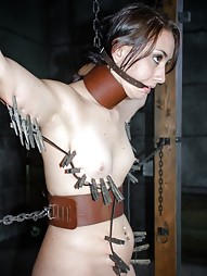 Freshly Chained