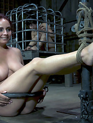 Ashley Takes Titty Torment, pic #5