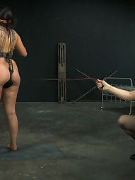 Dana Vixen Finally Breaks, pic #10