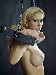 Cherie Deville: Hooked, Boxed & Rang, pic #11