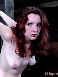 Beautiful Readhead Maggie Dominated, pic #15