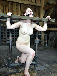 Hazel Visits Our Factory, pic #11