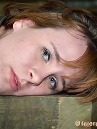 Bronte Is Just Holes, pic #3