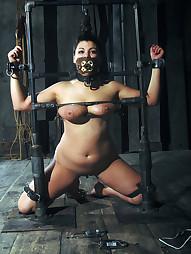 Dana Vixen Held Rigid, pic #1