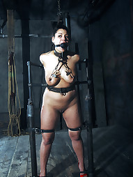 Dana Vixen Held Rigid, pic #12