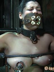 Dana Vixen Held Rigid, pic #13