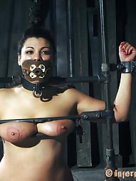 Dana Vixen Held Rigid, pic #2