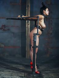 Dana Vixen Held Rigid, pic #3