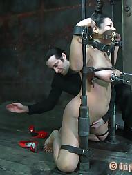 Dana Vixen Held Rigid, pic #6