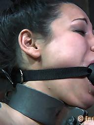 Dana Vixen Held Rigid, pic #7