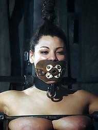 Dana Vixen Held Rigid, pic #9
