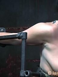 Dana Vixen Held Rigid, pic #10