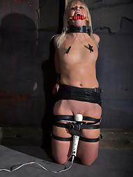 Sarah Jane Gets Adjusted, pic #10