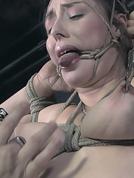 Disobedient Sister Dee, pic #13