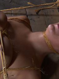 Sophie Ryan, Farm Slut, pic #2