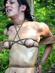 Elise Graves Goes Camping, pic #4