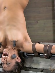 Jynx Maze Suspended Upside Down, pic #14