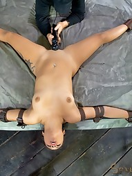 Jynx Maze Suspended Upside Down, pic #5