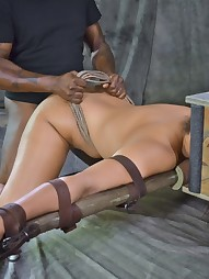 Sassy Penny Barber Gets the Box, pic #10