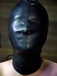 Whipped, Bound and Boxed, pic #12