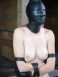Whipped, Bound and Boxed, pic #13