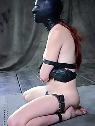 Whipped, Bound and Boxed, pic #14