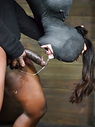 Hung In a Cock-oon, pic #14