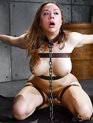Breaking Sex Machine, pic #13