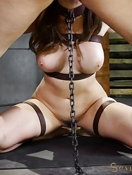 Breaking Sex Machine, pic #8