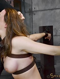 Breaking Sex Machine, pic #9