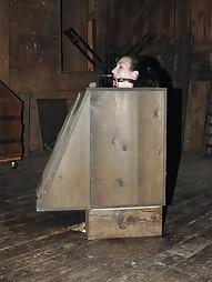 Bitch in a Box, pic #11