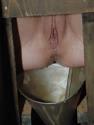 Bitch in a Box, pic #5