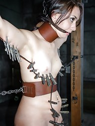 Freshly Chained, pic #2
