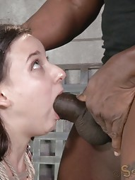 Brunette newbie bound and fucked, pic #1